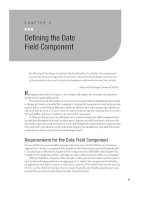 Defining the Date Field Component