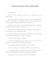 Giáo trình Viêm Gan Siêu Vi B và Thai Phụ