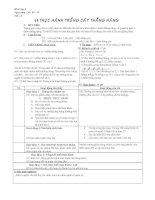 tiết 3- hinh học 6 - giáo án 4 cột