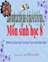 Giáo án sinh 8 hội giảng cấp tỉnh Hà Nam