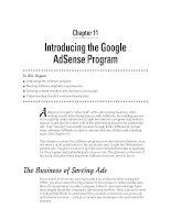 Introducing the Google AdSense Program