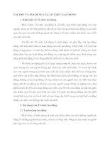 VAI TRÒ VÀ NỘI DUNG CỦA TỔ CHỨC LAO ĐỘNG