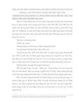 MỘT SỐ GIẢI PHÁP NHẰM NÂNG CAO CHẤT LƯỢNG TÍN DỤNG TRUNG DÀI HẠN TẠI NGÂN HÀNG NGOẠI THƯƠNG VIỆT NAM
