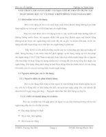 GIẢI PHÁP LÀM GIẢM THIỂU VÀ HẠN CHẾ RỦI RO TÍN DỤNG TẠI NGÂN HÀNG ĐẦU TƯ VÀ PHÁT TRIỂN ĐỒNG THÁP PGD SA ĐÉC