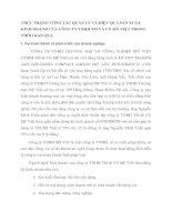 THỰC TRẠNG CÔNG TÁC QUẢN LÝ VÀ HIỆU QUẢ SẢN XUẤT KINH DOANH CỦA CÔNG TY TNHH TM VÀ CN MỸ VIỆT TRONG THỜI GIAN QUA