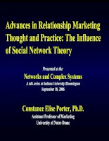 Advances in Relationship Marketing Thought and Practice: The Influence of Social Network Theory
