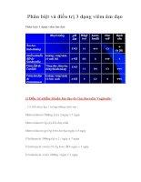 Phân biệt và điều trị 3 dạng viêm âm đạo