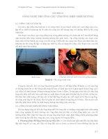 GS. Nguyễn viết Trung - Chương 8: Công nghệ thi công cầu vòm ống thép nhồi bêtông