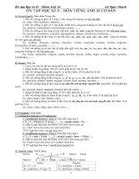 Ôn tập học kỳ 2 - Môn tiếng Anh 10 cơ bản