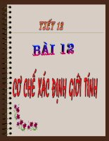 Bai 12: Cơ chế xác định giới tính