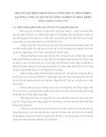 MỘT SỐ GIẢI PHÁP NHẰM TĂNG CƯỜNG ĐẦU TƯ PHÁT TRIỂN TẠI TỔNG CÔNG TY XÂY DỰNG NÔNG NGHIỆP VÀ PHÁT TRIỂN NÔNG THÔN