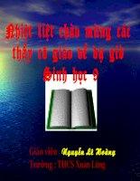 Tiết 22: Đột biến gen -Sinh 9 ( Thao giảng)