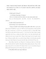 THỰC TRẠNG HOẠT ĐỘNG MỞ RỘNG THỊ TRƯỜNG TIÊU THỤ SẢN PHẨM CỦA CÔNG TY CỔ PHẦN TRUYỀN THÔNG TIN HỌC PHẦN MỀM VIỆT