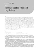 Removing Large Files and Log Rolling