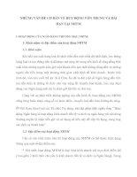 NHỮNG VẤN ĐỀ CƠ BẢN VỀ HUY ĐỘNG VỐN TRUNG VÀ DÀI HẠN TẠI NHTM