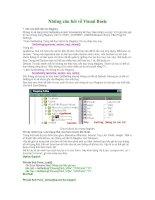 Những câu hỏi về Visual Basic