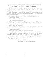 LẬP BÁO CÁO TÀI  CHÍNH VÀ PHÂN TÍCH MỘT SỐ CHỈ TIÊU VỀ TÌNH HÌNH TÀI CHÍNH CỦA DOANH NGHIỆP