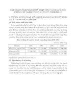 MỘT SỐ KIẾN NGHỊ NHẰM HOÀN THIỆN CÔNG TÁC HOẠCH ĐỊNH CHIẾN LƯỢC MARKETING CỦA CÔNG TY TNHH HẢI ÂU