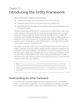 Introducing the Entity Framework