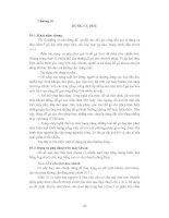 Chương 10: Dụng cụ phụ