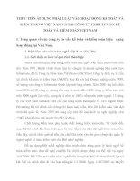 THỰC TIẾN ÁP DỤNG PHÁP LUẬT VÀO HOẠT ĐỘNG KẾ TOÁN VÀ KIỂM TOÁN Ở VIỆT NAM VÀ TẠI CÔNG TY TNHH TƯ VẤN KẾ TOÁN VÀ KIỂM TOÁN VIỆT NAM