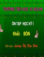 ON TAP THI  HOC KY I LOP 4_2010-2011