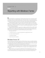 Reporting with Windows Forms