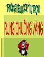 RUNG CHUÔNG VÀNG CHÀO MỪNG NGÀY NHÀ GIÁO VIỆT NAM 20/11/2010