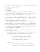 CƠ SỞ LÝ LUẬN VỀ CƠ CẤU TỔ CHỨC, HIỆU QUẢ HOẠT ĐỘNG, HỘI NHẬP KINH TẾ  QUỐC TẾ