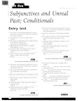 Subjunctives and unreal past, conditionals