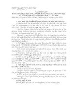 Mẫu báo cáo chuẩn kiến thức kỷ năng của trường tiểu học nộp ngày 12/11/2010