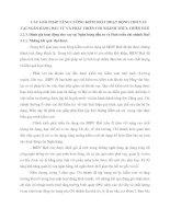 CÁC GIẢI PHÁP TĂNG CƯỜNG KIỂM SOÁT HOẠT ĐỘNG CHO VAY TẠI NGÂN HÀNG ĐẦU TƯ VÀ PHÁT TRIỂN CHI NHÁNH THỪA THIÊN HUẾ