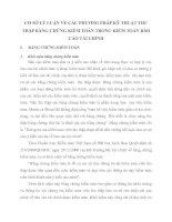 CƠ SỞ LÝ LUẬN VỀ CÁC PHƯƠNG PHÁP KỸ THUẬT THU THẬP BẰNG CHỨNG KIỂM TOÁN TRONG KIỂM TOÁN BÁO CÁO TÀI CHÍNH