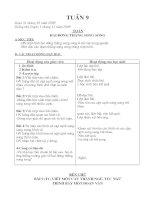 Giáo án chiều lớp 4 tuần 9- 13 (2cột)