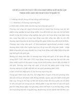 CƠ SỞ Lí LUẬN VÀ THỰC TIỄN CỦA HOẠT ĐỘNG XUẤT KHẨU GẠO TRONG ĐIỀU KIỆN HỘI NHẬP KINH TẾ QUỐC TẾ