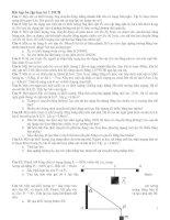 Bài tập ôn tập vật lý 10CB hk1 (2010-2011)