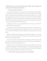 GIẢI PHÁP NÂNG CAO CHẤT LƯỢNG HOẠT ĐỘNG XTĐT NHẰM TĂNG CƯỜNG THU HÚT FDI VÀO HẢI DƯƠNG
