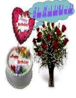 Chúc mừng sinh nhật AK !