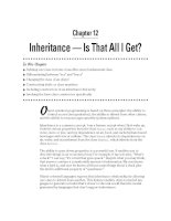 Inheritance — Is That All I Get