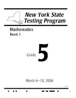 Mathematics grade 5- New York State