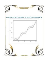 STATISTICAL THEORY AND ECONOMETRICS