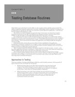 Testing Database Routines