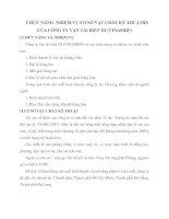 CHỨC NĂNG  NHIỆM VỤ CƠ SỞ VẬT CHẤT KỸ THUẬTBN CỦA CÔNG TY VẬN TẢI BIỂN III