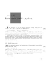 Statements and Exceptions