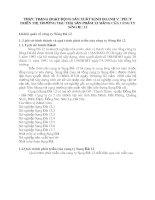 THỰC TRẠNG HOẠT ĐỘNG SẢN XUẤT KINH DOANH VÀ PHÁT TRIỂN THỊ TRƯỜNG TIÊU THỤ SẢN PHẨM XI MĂNG CỦA CÔNG TY SÔNG ĐÀ 12