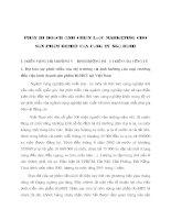 Phần III Hoạch định chiến lược Marketing cho sản phẩm remet của cụng ty ngũ hành