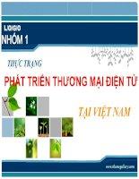 Thực trạng PHÁT TRIỂN THƯƠNG mại điện tử Việt Nam