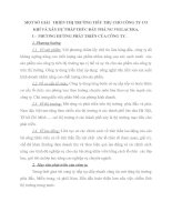 MỘT SỐ GIẢI   TRIỂN THỊ TRƯỜNG TIÊU THỤ CHO CÔNG TY CƠ KHÍ VÀ XÂY DỰ PHÁP THÚC ĐẨY PHÁ NG VIGLACERA