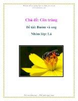 Chủ đề: Côn trùng - Đề tài: Bướm và ong - Nhóm lớp: Lá