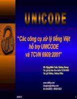 Các công cụ xử lý tiếng Việt và hỗ trợ UNICODE- TCVN 69092001